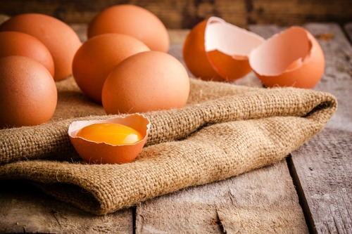 Money: Don't Put All of Your Eggs Into One Basket